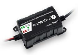 Nabíječka Everactive CBC-1 V2 (1A) pro  6V / 12V Gel / AGM / olověná - 1